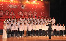 北大青鸟学校