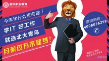 广州北大青鸟:高中生学什么专业工资比较高?