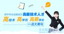 肇庆北大青鸟:初中生学什么技术好?
