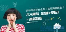 深圳北大青鸟:初中落榜学什么好?