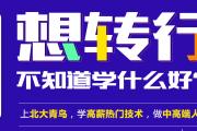深圳北大青鸟:it企业培训怎么样