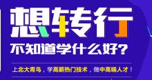 河源北大青鸟:广东河源去北大青鸟深圳嘉华转行学什么好
